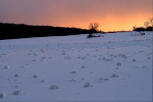 snow rollers.JPG